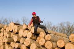Lumber engineer Royalty Free Stock Images