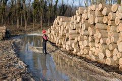 Lumber engineer Royalty Free Stock Photo