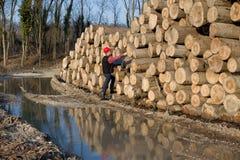 Lumber engineer Stock Photo