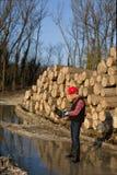 Lumber engineer Stock Image