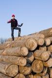 Lumber engineer Royalty Free Stock Photography