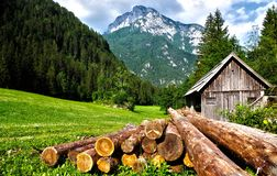 Lumber on field at mountain cabin stock images
