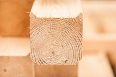 Lumber industrial wood texture, timber butts background Stock Photo