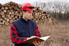 Lumber industry engineer Royalty Free Stock Image