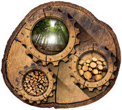 Lumber Industry - Gears on Tree Trunk. Section of tree trunk with wooden gears, green forest, trunks of trees cut and stacked, dry cut firewood logs in a pile Stock Photo