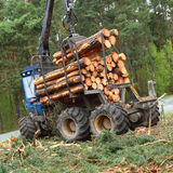 Lumber industry. Royalty Free Stock Images