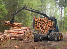Lumber industry. Royalty Free Stock Photo