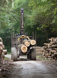 Lumber industry Stock Images