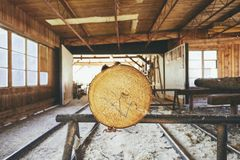Timber at the sawmill. Lumber industry. Tree trunk prepared for cutting at the sawmill Royalty Free Stock Image
