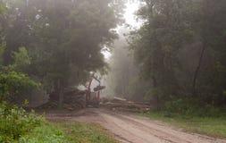 Lumber industry Royalty Free Stock Photos