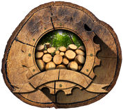 Lumber Industry - Wooden Icon on Trunk Stock Photos