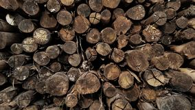 Lumber log prepare for fire arrange on the cabin Royalty Free Stock Photography