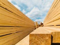 Free Lumber Market Royalty Free Stock Photo - 53892835