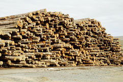 Lumber Processing 4. Piles of logs ready for processing at a lumber mill Royalty Free Stock Photo