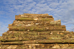 Lumber stack. Stack of lumber under bright blue sky Stock Photos