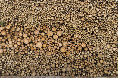 Lumber stack Royalty Free Stock Photos