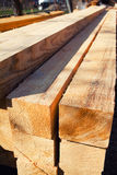 Lumber stack Royalty Free Stock Photo