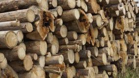 Lumber Royalty Free Stock Image