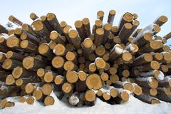 Lumber in stack Stock Photo
