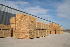 Lumber and warehouse. Territory in perspective view Royalty Free Stock Photo
