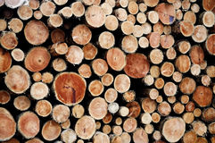 Lumber wood. Pile of cut lumber wood stock image