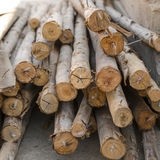 Lumber wood piled together Royalty Free Stock Photo