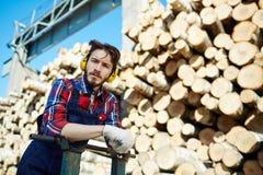 Lumber Working on Timber Falling Site Royalty Free Stock Photos