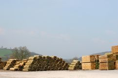 Lumber Yard Royalty Free Stock Image