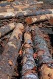 Lumber yard Stock Images