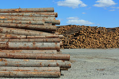 Lumber Yard Stock Images