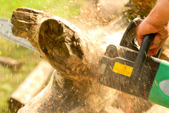 Lumbering. The photo of woodworking, lumbering, logging process Stock Photo