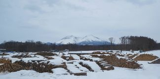 A lumbering yard under a snowy mountian royalty free stock images