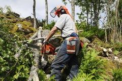 lumberjack действия Стоковое Изображение RF