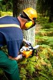 Lumberjack Stock Photography