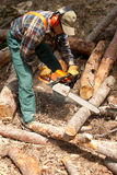 Lumberjack Royalty Free Stock Photography