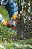 The lumberjack Royalty Free Stock Photography