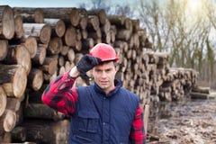 lumberjack Стоковые Фотографии RF