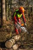 lumberjack Fotografía de archivo
