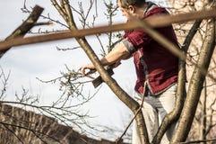 lumberjack Fotos de archivo libres de regalías