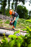 Lumberjack Zdjęcia Stock