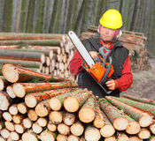The Lumberjack. Royalty Free Stock Photo