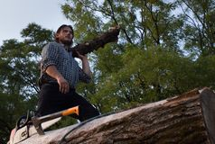 Lumberjack with chainsaw on logs. Young strong lumberjack with ax and chainsaw working on wooden logs pile stock images