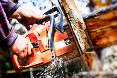 Lumberjack with a chainsaw making firewood Stock Images