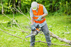 Lumberjack with chainsaw near big tree branch Stock Photo