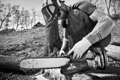 Lumberjack with chainsaw Stock Images