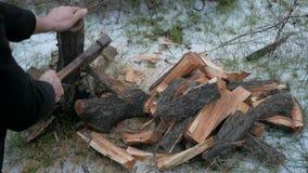 Lumberjack chopping wood stock footage