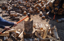 Lumberjack cuts birch wood. A lumberjack cuts a large mountain of birch wood with a large ax in a clear sunny day Royalty Free Stock Photography
