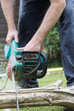 Lumberjack cuts a tree in the garden Stock Images