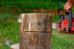 Lumberjack cutting the log of wood Royalty Free Stock Photos