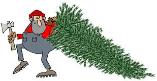Lumberjack dragging a pine tree. This illustration depicts a lumberjack carrying an axe and dragging a large pine tree Royalty Free Stock Images